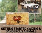 Ask Jase 14: Getting started 4wding & Dangerous Animals
